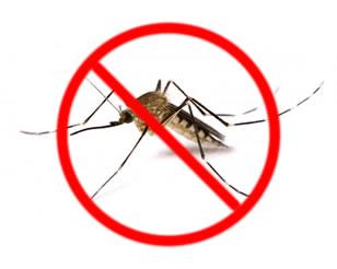 zucchet-disinfestazioni-zanzare